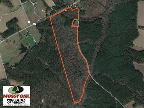 61 Acres of Hunting And Investment : Emporia : Greensville County : Virginia