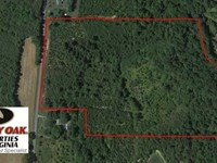 Reduced, 30.5 Acres of Timber And : Nathalie : Halifax County : Virginia
