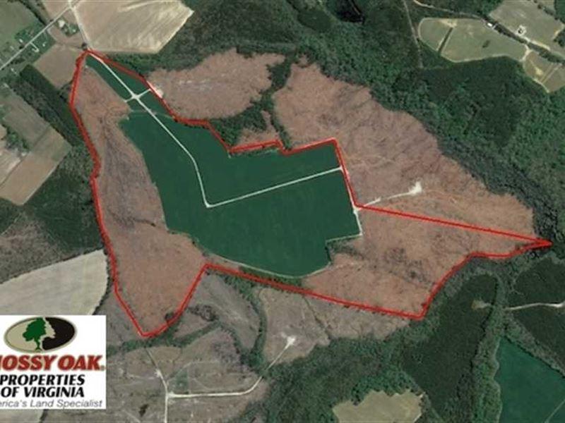 Under Contract, 165 Acres of Farm : Suffolk : Suffolk County : Virginia