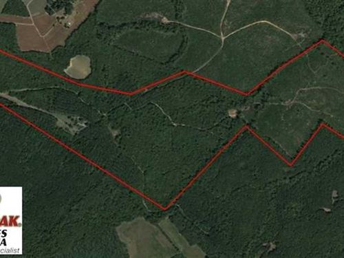 Under Contract, 174 Acres of Hunt : Long Island : Halifax County : Virginia