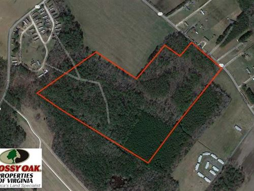 37 Acres of Hunting Land For Sale : Parksley : Accomack County : Virginia