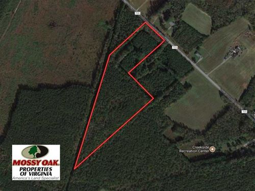 15 Acres of Hunting And Investment : Suffolk : Virginia