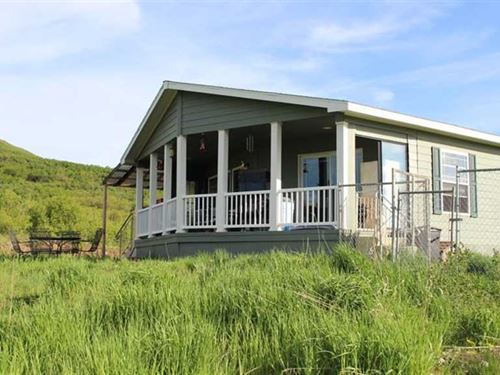 Secluded Home on 35 Hunting Acres : Hotchkiss : Delta County : Colorado
