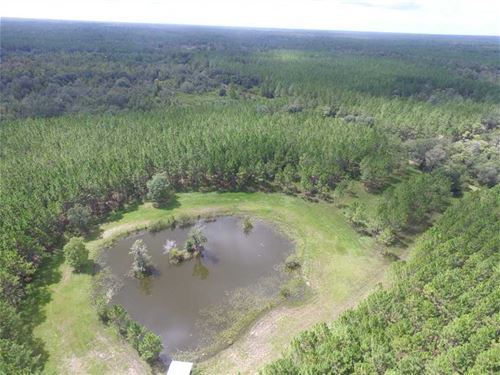 13209 Radcliff Rd. Perry, FL 32348 : Perry : Taylor County : Florida