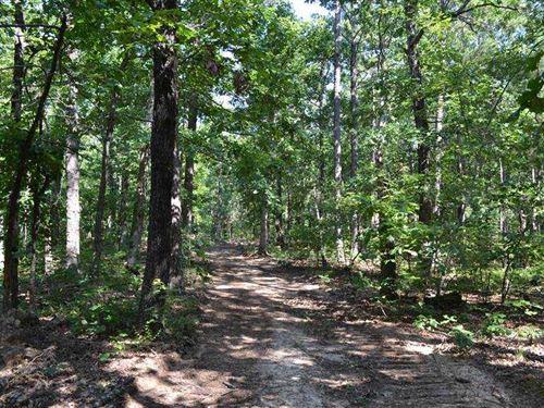 20 Acres of Timberland With Gr : Leslie : Van Buren County : Arkansas