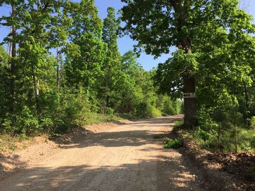 Price Reduced, 46 Acres of Re : Yellville : Marion County : Arkansas