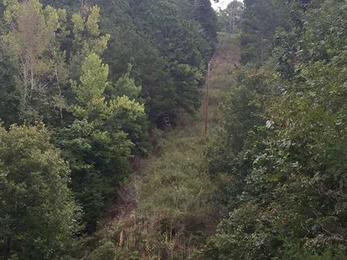 Price Reduced, 95 Acres : Harriet : Searcy County : Arkansas