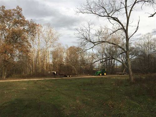 Working 229 Acre Cattle Farm Near : Licking : Texas County : Missouri
