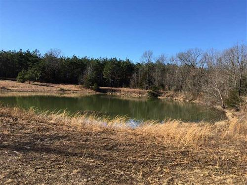 240 Acres Edgar Springs MO Hunting : Edgar Springs : Phelps County : Missouri