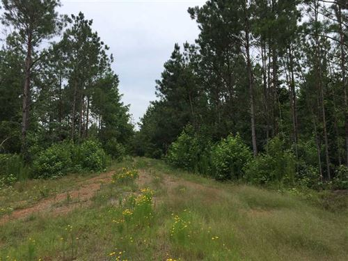 Cotton Tract, Lincoln Parish, 73.1 : Simsboro : Lincoln Parish : Louisiana