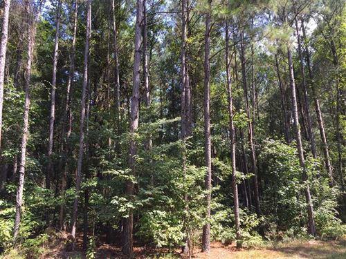 Castor Creek 1 Tract, Jackson Pari : Chatham : Jackson Parish : Louisiana