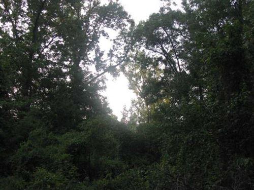 20 Acres of Floodable Timber Borde : Beebe : White County : Arkansas