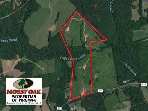 98 Acres of Hunting And Investment : Brookneal : Charlotte County : Virginia