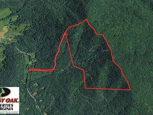 Reduced, 210 Acres of Hunting And : Goode : Bedford County : Virginia