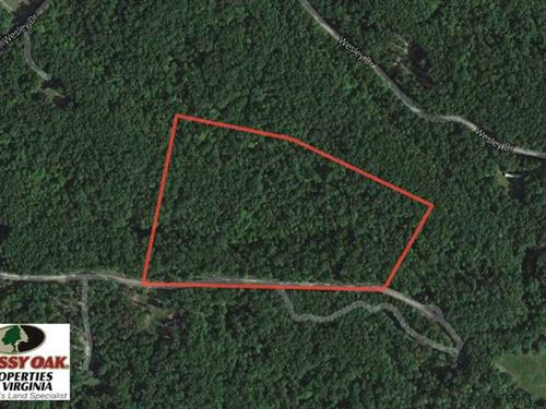 16 Acres of Residential Hunting La : Madison Heights : Amherst County : Virginia
