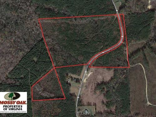 33.75 Acres of Hunting And Recreat : Lawrenceville : Brunswick County : Virginia