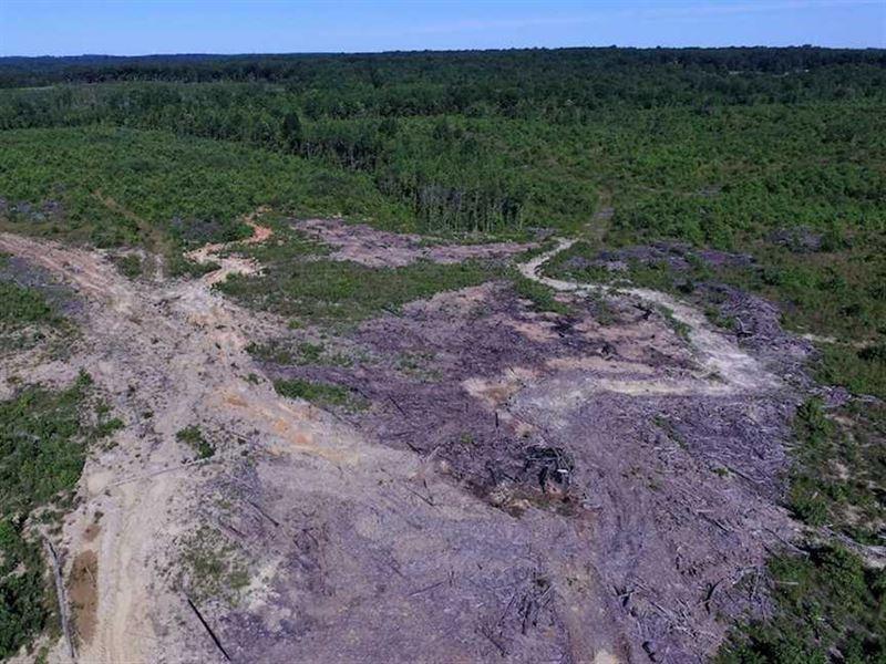 Under Contract, 124.66 Acres of : Keysville : Lunenburg County : Virginia