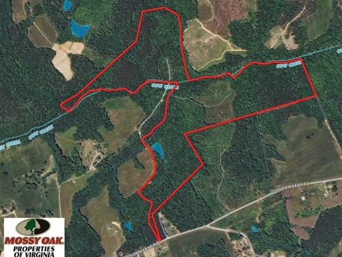 88.86 Acres of Hunting And Recreat : Nathalie : Halifax County : Virginia