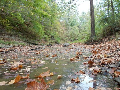 Coal Creek Hunting Grounds : Universal : Vermillion County : Indiana