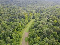 27.7 Acres That Borders Hoosier Na : Shoals : Martin County : Indiana
