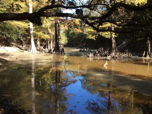 Hooterville Road Tract, Caldwell : Kelly : Caldwell Parish : Louisiana