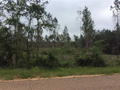 Dyson Creek Road Tract, Grant Pari : Pollock : Grant Parish : Louisiana