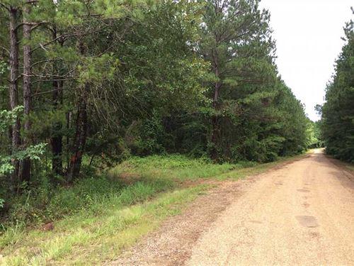 Brown Chestnut 2 Tract, Natchitoch : Chestnut : Natchitoches Parish : Louisiana