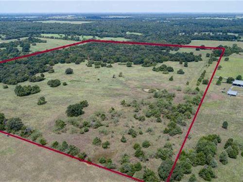 Beautiful 70 Acres of 50 Wood : Bremond : Robertson County : Texas
