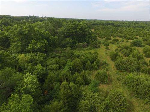 34 Acre Prime Whitetail Habitat pr : Independence : Montgomery County : Kansas