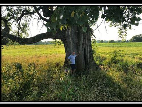 Pleasant Shade : Hilliard : Franklin County : Ohio