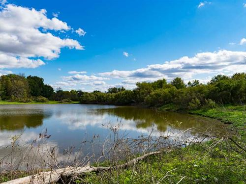 Affordable Hunting Land in Dodge : Ashippun : Dodge County : Wisconsin
