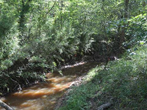 Prime Nacogdoches Hunting Land : Etoile : Nacogdoches County : Texas