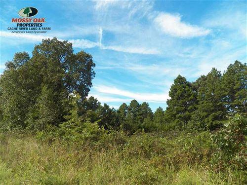 Beautiful Views Overlooking Shirle : Shirley : Van Buren County : Arkansas