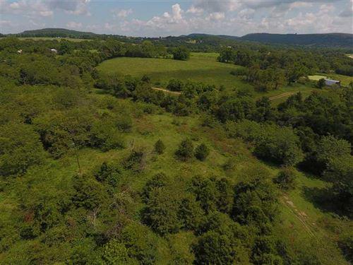 Berryville Pasture 67 : Berryville : Carroll County : Arkansas