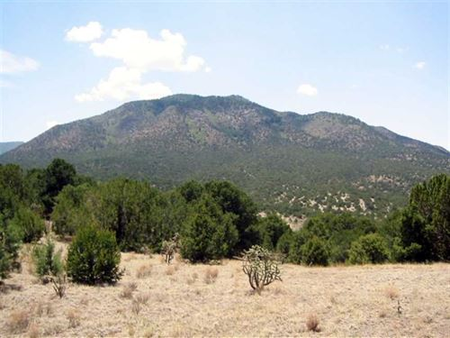 145 Acres at Nogal Tract 5A-1 : Nogal : Lincoln County : New Mexico