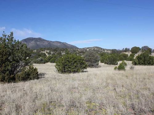 141.2 Acres at Nogal, Tr 6 : Nogal : Lincoln County : New Mexico