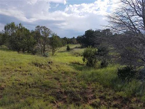 115 Largo Rd : Capitan : Lincoln County : New Mexico