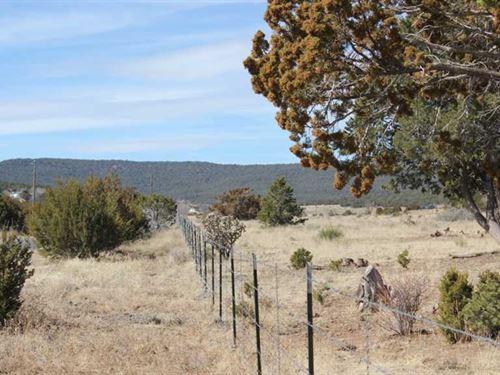 192 Acres For Development : Tijeras : Bernalillo County : New Mexico