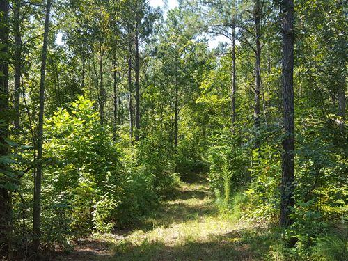 Boatner Creek Tract : Roanoke : Randolph County : Alabama