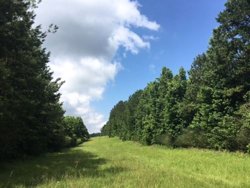 Great Hunting & Timber Investme : Gloster : Amite County : Mississippi