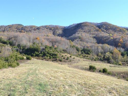 283 Acres In Pounding Mill, Va : Pounding Mill : Tazewell County : Virginia