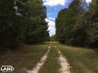 Ehrhardt Recreational Timber Invest : Ehrhardt : Bamberg County : South Carolina