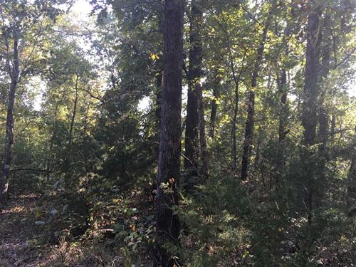 This 60 Acre Piece is on Highwa : Hardy : Sharp County : Arkansas
