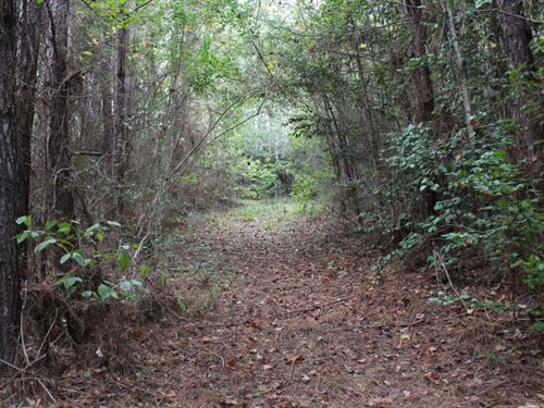 50 Acres In Copiah County, Ms : Hazlehurst : Copiah County : Mississippi