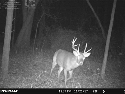 Premium Hunting Property : Blanchardville : Iowa County : Wisconsin