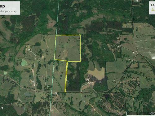 Bullock County Beaut : Fitzpatrick : Bullock County : Alabama
