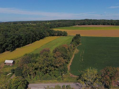 80.2+/- Acres Preserved Farmland : Pittstown : Hunterdon County : New Jersey