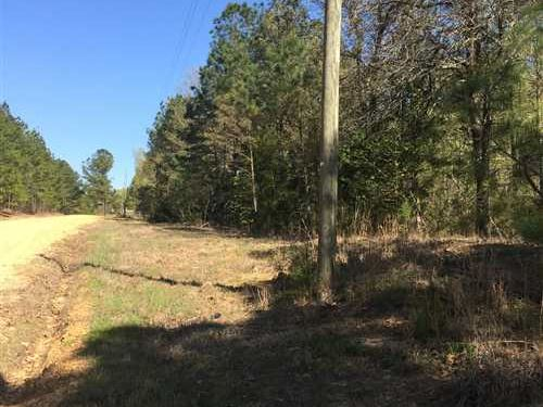 5 Acres of Residential Timber Land : Batesville : Panola County : Mississippi