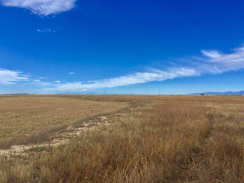 Brackett Creek 120 : Calhan : El Paso County : Colorado