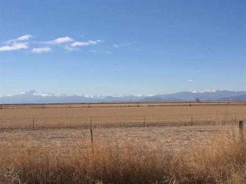 37790 Jaz Road : Windsor : Weld County : Colorado